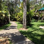 Foto de Florida Tech Botanical Garden