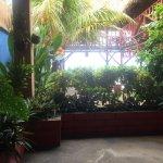 beautiful gardens through the hotel