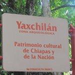 Photo of Yaxchilan