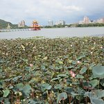 Photo of Lianchi (Lotus) Lake