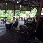 Tabin Wildlife Resort Picture