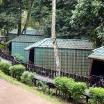 Tabin Wildlife Resort Foto