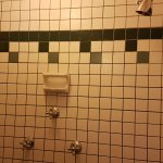 the shower (no tub) was filthy, loose mould in the corners that flushed away. Grout black in spo