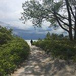 Foto de Wellington Rotary Beach