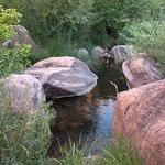 trail follows stream