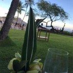 Orchid's in the Halekulani Hotel