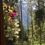 Huckleberry Cabin