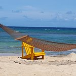 Hammock and beach chairs are waiting for you