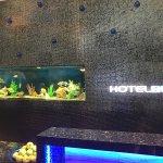 Photo of Hotel BLU