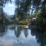 Self Realization Fellowship Lake Shrine Temple Foto
