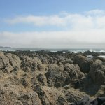 photo of Asilomar looking South, 30 feet from the parked car