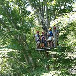 Up In the Trees Getting Ready to Zip