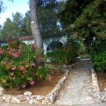 Photo of Club Hotel Tropicana Mallorca