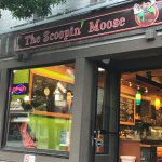Great little ice cream shop
