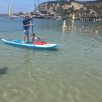 Paddle Board - Swim Area
