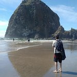 Close up view of the Haystack Rock, Cannon Beach, Oregon