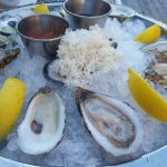 shredded horseradish root was served with the oysters