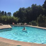 Lovely pool , quiet setting with pretty plantings