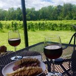 Vineyard views with some treats to enjoy them with.