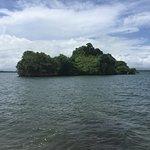 Foto de Parque Nacional Los Haitises