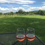 Enjoying some rose at Sharp Rock vineyards--lots of great spots to sit & relax.