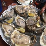 """The """"guest"""" oysters are the best you will ever find!!!"""
