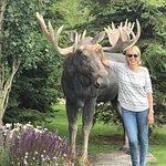 Foto de Alpenhof Lodge
