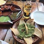 Foto de las guacamayas sucursal