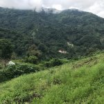 Panama Pathfinders Foto