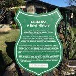 Entrance of Starline Alpacas Farmstay Resort