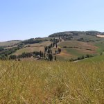 A small stop along the way to Pienza