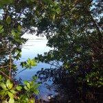 Cedar Point Environmental Park Foto
