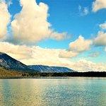 A view of Jenny Lake