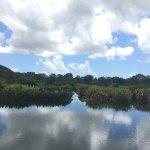 Photo de Wakodahatchee Wetlands