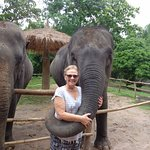Visiting with elephants - wow