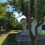 Foto di Esperidi Resort