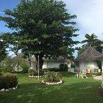 Foto de Royal Decameron Club Caribbean