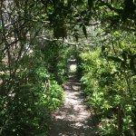 La Nature s'exprime tout au long du Chemin...