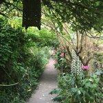 Ce Chemin fleuri vous fera passer dans un autre Monde....