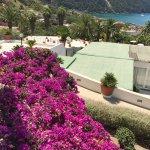 Photo of Semiramis Hotel de Charme Ischia