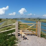 Walk by river close to YHA South Downs and Southease station