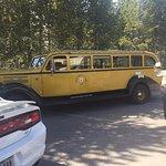 Vintage Yellow Bus Tour