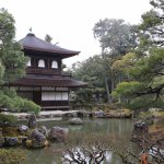Inside the temple park