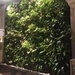 Foto di Chelsea Hotel, Toronto