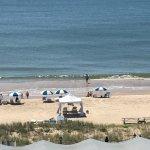 Wavecrest Oceanfront Resort Photo