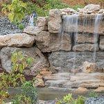 La cascade et ses fées
