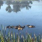 Foto de Lee Metcalf National Wildlife Refuge