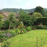 The beautiful back garden.