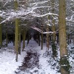 Winter in Rosliston