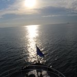 Photo of Panama Marine Adventures - Day Tours